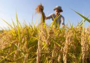 農業を営む男性の婚活…「無暗に嫌わないで!」と悲痛の叫び