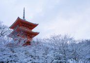 京都のおすすめ大人の婚活デートスポット3選‐冬編