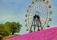 【婚活デートスポット】千葉のおすすめデートスポット2選