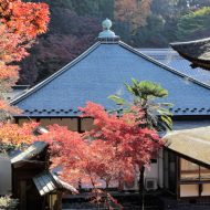 【婚活デートスポット】愛知県の隠れスポット瀬戸市定光寺で森林浴