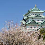 名古屋のデートスポットなら名古屋城!雑学で10倍楽しめる!