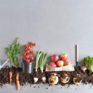 畑で合コン!?美味しい野菜も作れる「農業婚活」