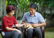 シニア婚活・格差婚の実態。40代や50代の婚活どう考える?
