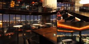 冬の花火と都心の夜景☆海を臨む最上階Sky Terraceで恋活パーティ