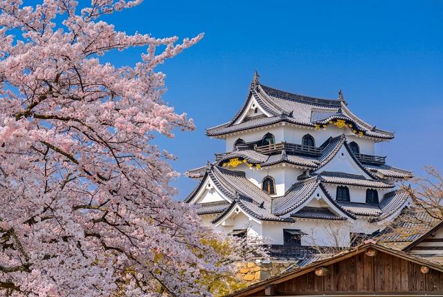 滋賀県での婚活を応援する「ハグナビしが」のご紹介